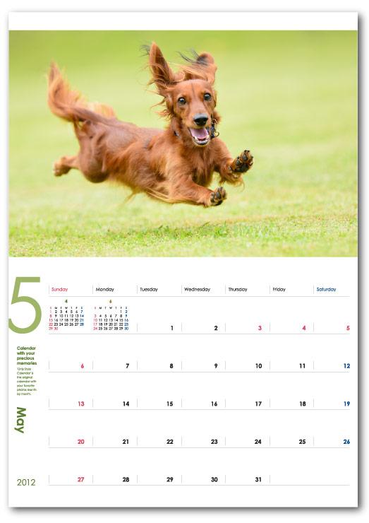 飛行犬オリジナルカレンダー
