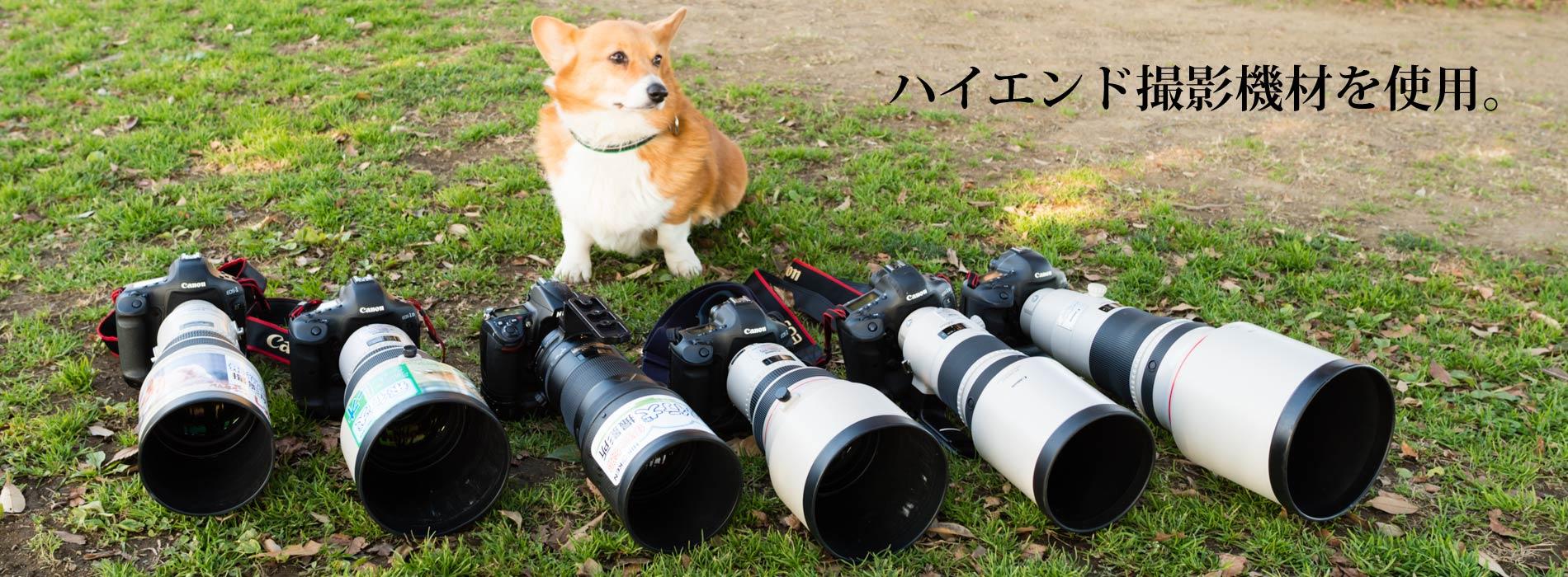 ハイエンド撮影機材を使用。