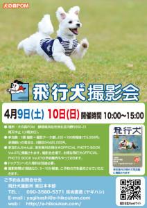 犬の森POM飛行犬撮影会