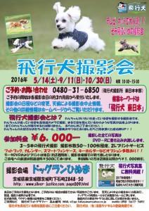 2016_HINUMA_A4