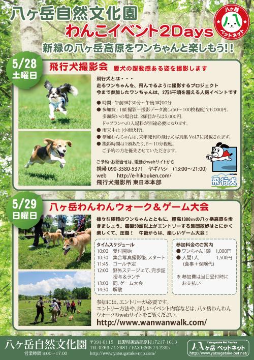 八ヶ岳自然文化園 飛行犬撮影会